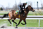 01 April 2010.  Hip #20 FULL ACQUITTAL  Purge - Full Figure filly.