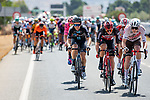 The breakaway tries to form during Stage 11 of La Vuelta d'Espana 2021, running 133.6km from Antequera to Valdepeñas de Jaén, Spain. 25th August 2021.     <br /> Picture: Cxcling | Cyclefile<br /> <br /> All photos usage must carry mandatory copyright credit (© Cyclefile | Cxcling)
