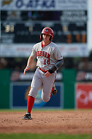 Auburn Doubledays Jake Randa (16) running the bases during a NY-Penn League game against the Batavia Muckdogs on June 19, 2019 at Dwyer Stadium in Batavia, New York.  Batavia defeated Auburn 5-4 in eleven innings in the completion of a game originally started on June 15th that was postponed due to inclement weather.  (Mike Janes/Four Seam Images)