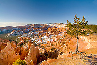 winter snow on red rocks, Sunrise Point, Bryce Canyon National Park, Utah, USA