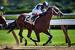 SARATOGA SPRINGS, NY - AUGUST 26: Hazit with John Velazquez up breaks his maiden at Saratoga Race Course on August 26, 2017 in Saratoga Springs, New York. (Photo by Alex Evers/Eclipse Sportswire/Getty Images)