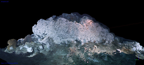 An example of a 3D reconstruction of a cold water coral habitat from -750 m water depth at the Porcupine Bank Canyon