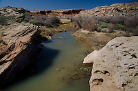 Salt Wash near Wolfe Ranch, Arches National Park, Utah, US