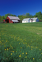 spring, South Peacham, VT, Vermont, Red barn and white farmhouse in the spring in South Peacham.