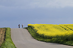 Europa, DEU, Deutschland, Nordrhein Westfalen, NRW, Rheinland, Niederrhein, Juechen, Agrarlandschaft, Bluehende Rapsfelder, Raps, Radfahrer, Fahrradfahrer, Fruehling, Weg, Strasse, Kategorien und Themen, Landwirtschaft, Landwirtschaftlich, Agrar, Agrarwirtschaft, Natur, Naturfoto, Naturfotos, Naturfotografie, Naturphoto, Naturphotographie, Landschaft, Landschaften, Landschaftsfoto, Landschaftsfotografie, Landschaftsphoto, Landschaftsphotographie......[Fuer die Nutzung gelten die jeweils gueltigen Allgemeinen Liefer-und Geschaeftsbedingungen. Nutzung nur gegen Verwendungsmeldung und Nachweis. Download der AGB unter http://www.image-box.com oder werden auf Anfrage zugesendet. Freigabe ist vorher erforderlich. Jede Nutzung des Fotos ist honorarpflichtig gemaess derzeit gueltiger MFM Liste - Kontakt, Uwe Schmid-Fotografie, Duisburg, Tel. (+49).2065.677997, schmid.uwe@onlinehome.de, www.image-box.com]