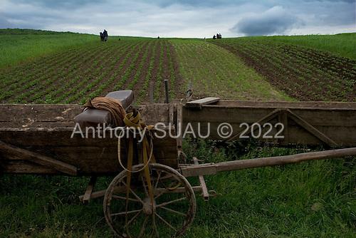 Solinivka, Ukraine.May 31, 2005 ..Plowing the fields....