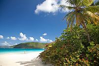 Cinnamon Bay<br /> Virgin Islands National Park<br /> St John, US Virgin Islands