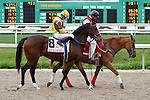 February 21, 2015: Trace Creek with Chris Landeros up in the Fairgrounds Handicap at the New Orleans Fairgrounds Risen Star Stakes Day. Steve Dalmado/ESW/CSM
