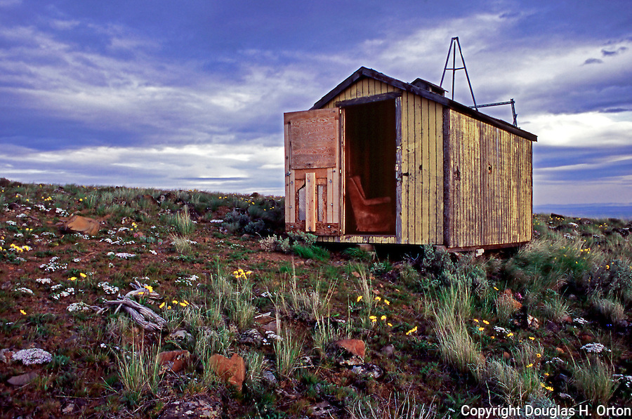 Abandoned shed apparently used as temporary migrant housing in midst of Quincy Hills Natural Area.