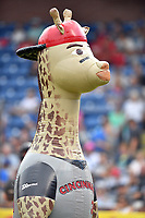Zooperstars Ken Giraffey, Jr. during a game between the Rome Braves and the Asheville Tourists at McCormick Field on June 24, 2017 in Asheville, North Carolina. The Tourists defeated the Braves 6-5. (Tony Farlow/Four Seam Images)