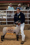 Argonaut FFA member Keshaun Monge-Harris proudly shows to sell his Best Local Bred lamb at the 56th Junior Livestock Auction, Back in the Saddle Again, Sunday at the 82nd Amador County Fair, Plymouth, California<br /> .<br /> .<br /> .<br /> @AmadorCountyFair, #1SmallCountyFair, #VisitAmador, #PlymouthCalifornia, #AmadorCountyFair, #Best4DaysOfSummer, #AmadorCounty, #26thDAA
