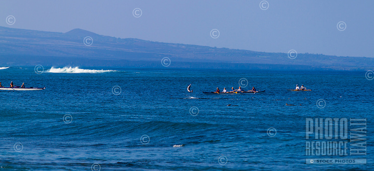 A spinner dolphin jumps out of the water in front of outrigger canoe paddlers at Anaeho'omalu Bay, Big Island.