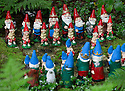 29/05/15<br /> <br /> Two gnome families get ready for a game of chess.<br /> <br /> For one group of hardy folk, today's rain only adds to the fun that can be had by the beach, fishing in the river, or playing in the woods.<br /> <br /> The gnomes, and a few pixies and fairies, make up a collection, now believed to be close to 2,000 individuals, that 'live' at the Gnome Reserve near Bideford, North Devon.<br /> <br /> Visitors are asked to wear gnome hats, so as not to scare the gnomes who feature as the largest collection in the Guinness Book of World Records. <br /> <br /> Ann Atkin's collection began in 1979 and features traditional gnomes on toad-stools to Olympian athletes, astronauts who work for 'GNASA', a beach scene complete with gnomes in bikinis, a queue for the ice-cream van, Punch and Judy gnomes and another floating on a lilo. Other gnomes can be scene kissing, and flashing their bottoms as the visit the Gents and Ladies toilets. <br /> <br /> <br /> All Rights Reserved - F Stop Press.  www.fstoppress.com. Tel: +44 (0)1335 418629 +44(0)7765 242650