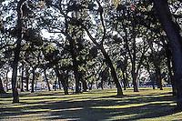 Ballparks: Stockton. CA Municipal Park adjoining Billy Hebert Field. Corner of Sutter & Alpine Streets.