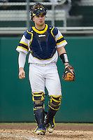 Michigan Wolverines catcher Harrison Wenson (45) during the NCAA baseball game against the Washington Huskies on February 16, 2014 at Bobcat Ballpark in San Marcos, Texas. The game went eight innings, before travel curfew ended the contest in a 7-7 tie. (Andrew Woolley/Four Seam Images)