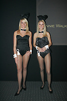 Playboy Bunny¥s