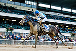 ELMONT, NY - OCTOBER 01: Joking #3, ridden by Manuel Franco, wins the Vosburgh Stakes at Belmont Park on October 1, 2016, in Elmont, NY. (Photo by Scott Serio/Eclipse Sportswire/Getty Images)