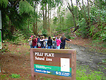 Pelly Place Natural Area, Seattle, Washington