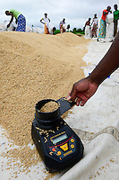 BURKINA FASO, Gaoua, rice hybrid seed production for Nafaso, women dry rice, measuring of moisture content with grain moisture meter / GIZ Projekt ProCIV Grüne Innovationszentren, WSK Reis, Saatgut Herstellung, Trocknung und Verpackung von Reis Hybrid Saatgut bei Saatgutproduzent Nahondomo Patenfo, Lieferung an Nafaso, Messung des Feuchtigkeitsgehalt