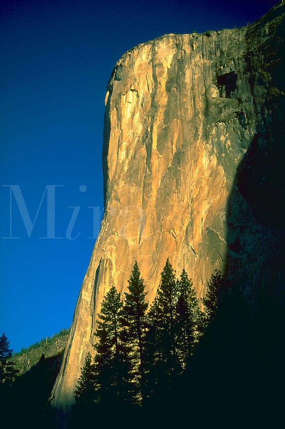 Sun shinning on the rocky face of El Capitan in Yosemite Valley, California with blue sky in the distance.