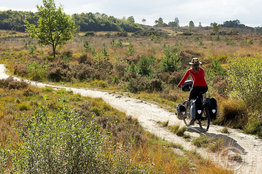 Nyomi Rowsell riding Thorn Nomad Bike..Chobham Common , Surrey  October 2010..pic copyright Steve Behr / Stockfile