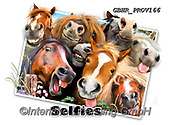 Howard, SELFIES, paintings+++++Horses Selfies,GBHRPROV166,#Selfies#, EVERYDAY