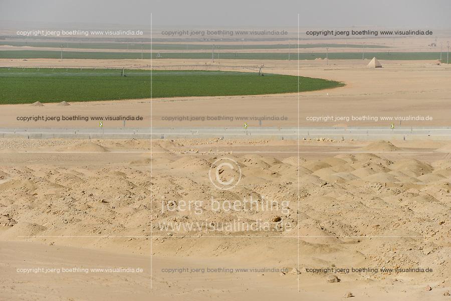 EGYPT, road Cairo to Baharia, desert farming, 1.5 Mio Feddan Project, the round fields are irrigated by pivot circle irrigation, the fossile groundwater from the Nubian Sandstone Aquifer is pumped from 1000 metres deep wells / AEGYPTEN,  Landwirtschaft in der Wueste, 1.5 Millionen Feddan Projekt, Pivot Kreisbewaesserung von neuen Feldern