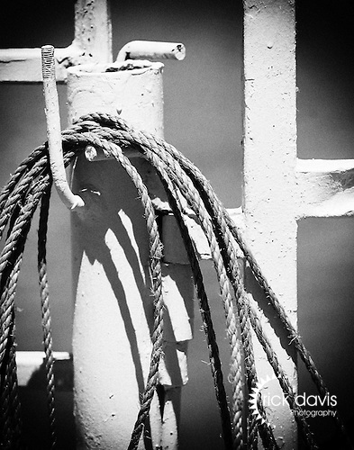 A coiled rope hangs from the gate, always at the ready to assist a cowboy in a pinch.