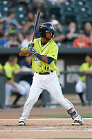 Shortstop Luis Carpio (11) of the Columbia Fireflies bats in a game against the Augusta GreenJackets on Saturday, July 29, 2017, at Spirit Communications Park in Columbia, South Carolina. Columbia won, 3-0. (Tom Priddy/Four Seam Images)