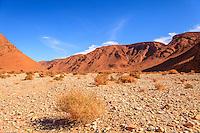 Africa, Marocco,Ued tamanart