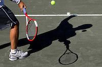 Palisades Tennis Championship
