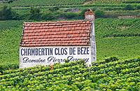 Vineyard. Chambertin Clos de Beze Domaine Pierre Damoy.  Gevrey Chambertin, Cote de Nuits, d'Or, Burgundy, France
