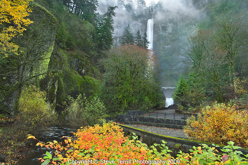 Multnomah Falls and fall foliage in Columbia River Gorge National Scenic Area, Oregon