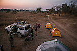African Lion (Panthera leo) trackers, Timbo Frackson and Christopher Muduwa, and biologist, Xia Stevens, setting up camp site in floodplain, Kafue National Park, Zambia