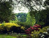 Tom Mackie, FLOWERS, photos, Stourhead Gardens in Spring, Wiltshire, England, GBTM87893-1,#F# Garten, jardín