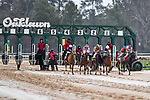 February 28, 2021: XXXXX ,  Bayakoa Stakes (Grade 3)  at Oaklawn Park in Hot Springs,  Arkansas. Ted McClenning/Eclipse Sportswire/CSM