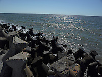 SEA_LOCATION_80340