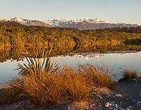 coastal | New Zealand