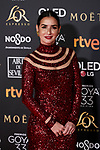 Belen Lopez attends to 33rd Goya Awards at Fibes - Conference and Exhibition  in Seville, Spain. February 02, 2019. (ALTERPHOTOS/A. Perez Meca)