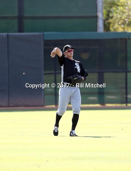 Alex Call - 2017 AIL White Sox (Bill Mitchell)