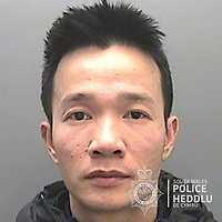 "Pictured: Dung Phu Vu<br /> Re: The ringleaders of a Vietnamese crime gang have been jailed after police seized 2.5 tonnes of cannabis worth about £6m in raids across south Wales.<br /> A total of 21 people have been sentenced in a case going back to 2017 after dozens of cannabis factories were uncovered across the region and beyond.<br /> One of the defendants initially claimed to be 14 years old, but police proved he was actually aged 26.<br /> The gang leaders were sentenced at Merthyr Tydfil Crown Court on Friday.<br /> Bang Xuan Luong, 44, was sentenced to eight years in prison. His partner, 42-year-old Vu Thi Thu Thuy, was jailed for six years and Tuan Anh Pham, 20, who was described in court as the ""IT Man"", received five years.<br /> An investigation into a cannabis factory in the Cynon Valley led officers from South Wales Police's Force Intelligence and Organised Crime Unit (FIOCU) to a string of others across south Wales, Gwent and Dyfed-Powys force areas."