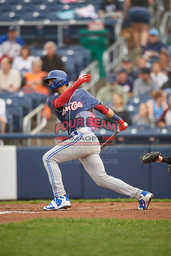 New Hampshire Fisher Cats shortstop Lourdes Gurriel Jr. (16) hits a single and drives in a run during a game against the Trenton Thunder on August 19, 2018 at ARM & HAMMER Park in Trenton, New Jersey.  New Hampshire defeated Trenton 12-1.  (Mike Janes/Four Seam Images)