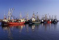 Denmark, Romo, Jylland, Scandinavia, Europe, Fishing boats docked in Havneby Harbor on the North Sea on Romo Island.