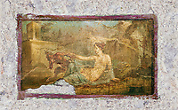 A Roman erotic fresco painting from Pompeii depicting Pan and  Hermaphrodite,  Naples National Archaeological, 50-79 AD , inv no 27700 , Naples National Secret Museum or Secret Cabinet,