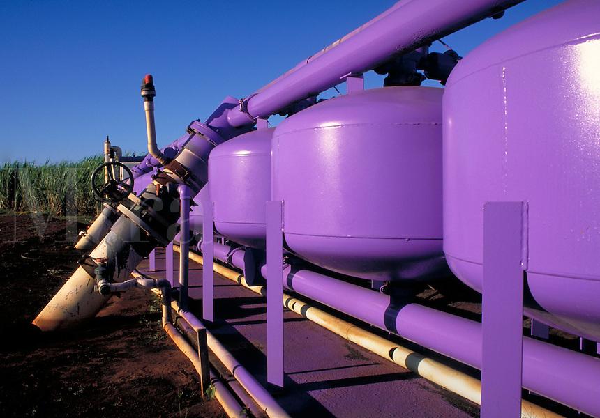bright purple irrigation additive tanks in sugar cane field. Agribusiness. Hawaii.