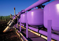 bright purple irrigation additive tanks in sugar cane field. Agribusiness. Hawaii.