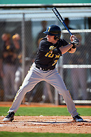 Iowa Hawkeyes designated hitter Austin Guzzo (20) at bat during a game against the Dartmouth Big Green on February 27, 2016 at South Charlotte Regional Park in Punta Gorda, Florida.  Iowa defeated Dartmouth 4-1.  (Mike Janes/Four Seam Images)