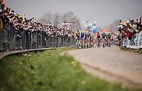 first passage up the Oude Kwaremont<br /> <br /> 103rd Ronde van Vlaanderen 2019<br /> One day race from Antwerp to Oudenaarde (BEL/270km)<br /> <br /> ©kramon
