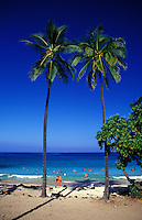 Two tall palm trees with people swimming at Magic sands beach park near Kailua Kona