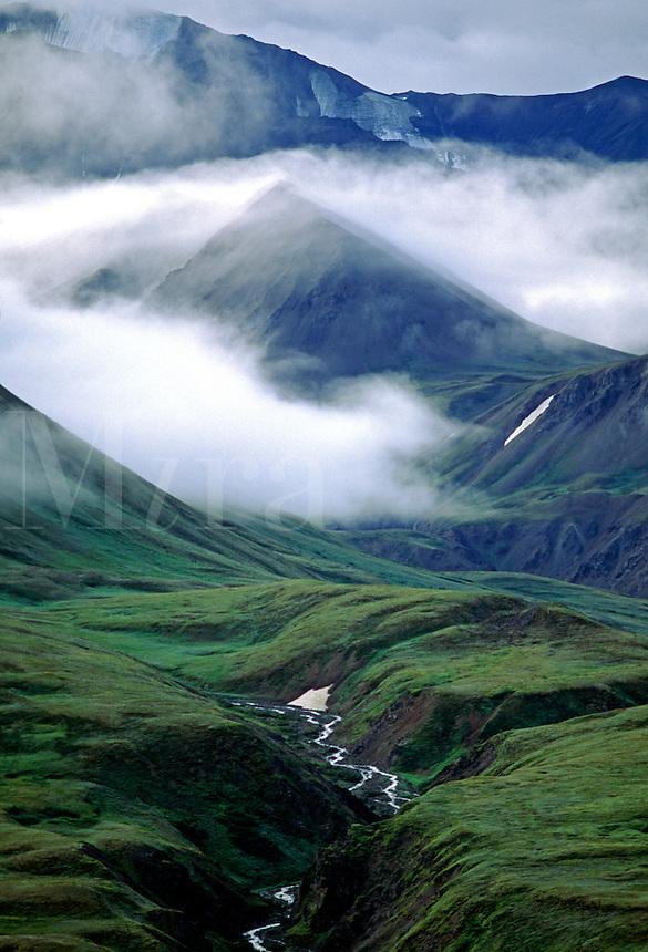 Mist rises above the ALAKSA RANGE - DENALI NATIONAL PARK, ALASKA